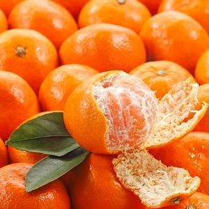 Mandarini 7 kg
